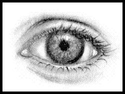 VisualArts_WriterSideUp.com_byDonnaMarie